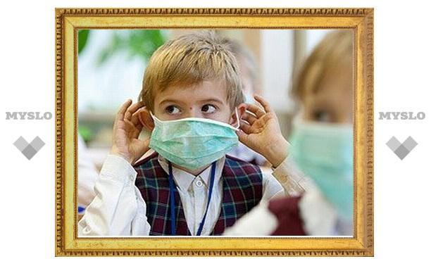 Тульские школы закрывают из-за гриппа