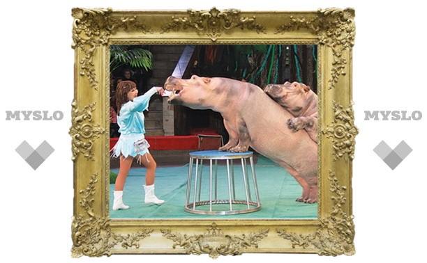 Нелегкая это работа – дрессировать бегемота!