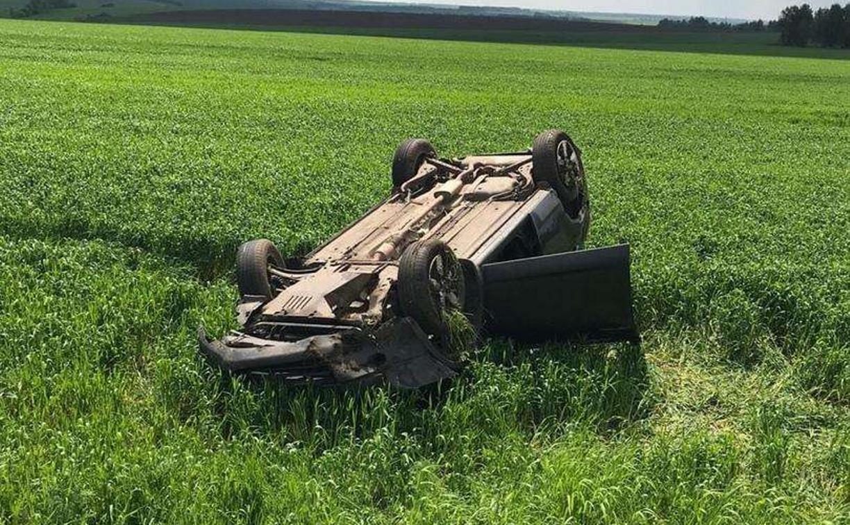 В Тульской области столкнулись Nissan и Hyundai: пострадали два человека