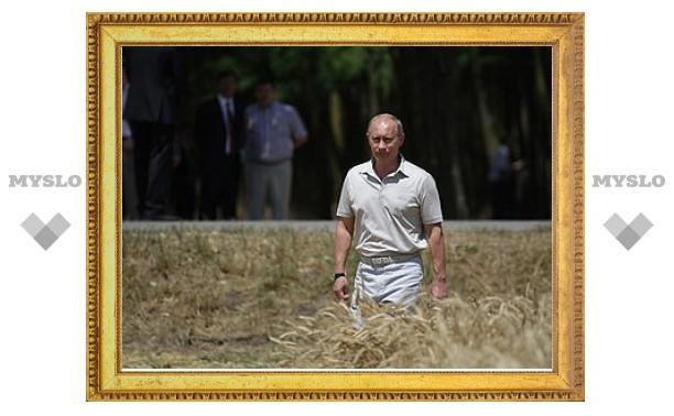 Путин запретил экспорт зерна