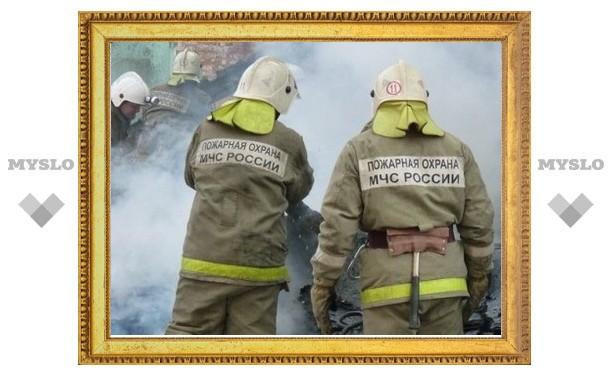 На пожаре в Тульской области погибли мать и двое малышей