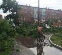 По Ефремову прошёл ураганный ветер. Фото