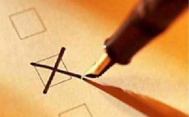 Самая высокая явка на выборы в Тульской области - в Веневе