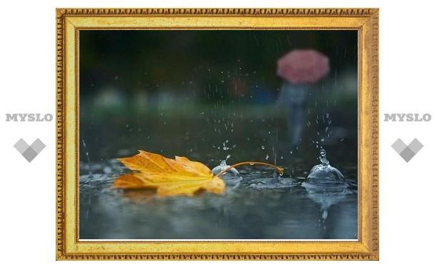 В ближайшие дни в Туле ожидается дождь