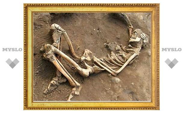 В овраге под Тулой нашли скелет