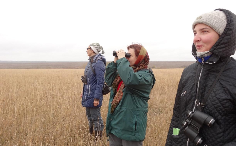В день Всероссийского субботника туляки смогут понаблюдать за птицами