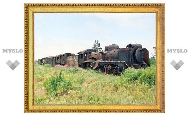 Тульская железная дорога попрощалась с 400 гектарами кустов