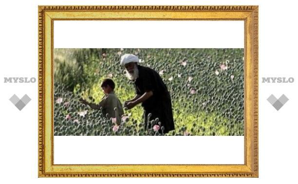 Тулякам расскажут об Афганистане