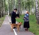 Где в Туле можно выгуливать собак: список адресов
