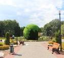 Центральный парк vs набережная: выбрана лучшая локация в Туле