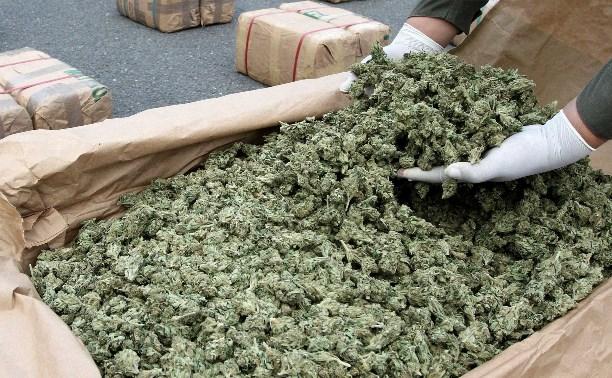 Жителя Богородицка приговорили к 4 годам за хранение 1,8 кг марихуаны
