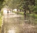 Погода в Туле 13 июля: сильный дождь с грозой, до 25 градусов тепла