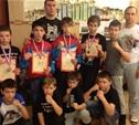 Юные тульские бойцы успешно выступили в Подмосковье