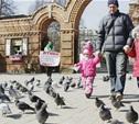 Торговать птицами на Благовещение не дадут полиция и активисты