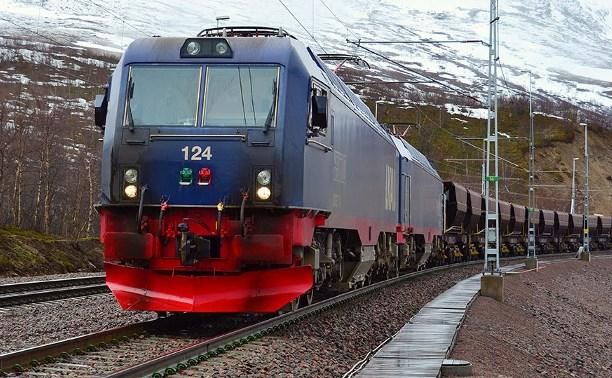 Тульская школьница погибла под поездом