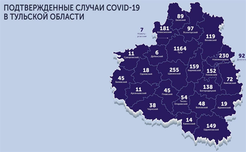Подтвержденные случаи COVID-19 в Тульской области: карта на 25 мая