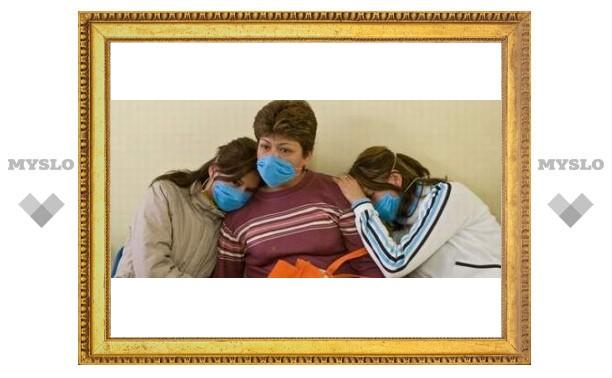 В соседних с Тулой областях умирают от свиного гриппа