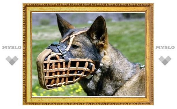 В Новомосковске штрафуют за неправильный выгул собак