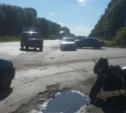 В авариях в Тульской области пострадали четыре мотоциклиста