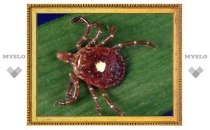 В Китае обнаружена новая клещевая вирусная инфекция