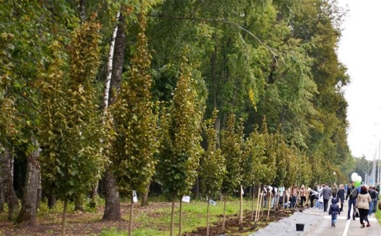 В Центральном парке Тулы дан старт экологической акции «Кислород городам!»
