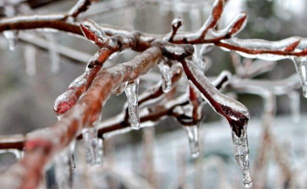 Погода в Туле 11 января: снег, облачность, лёгкий мороз
