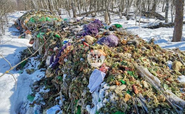 Под Тулой неизвестные сбросили в лесополосе несколько тонн гнилых овощей
