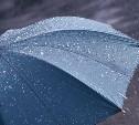 18 июля в Тульской области прогнозируют дождь с грозой