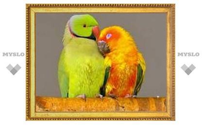 Туляки отметят День супружеской любви