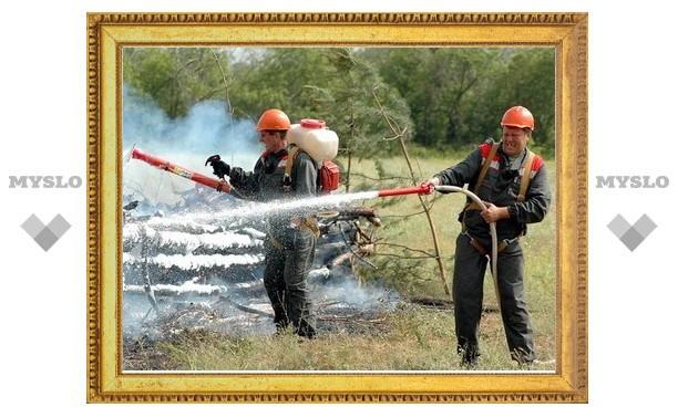 Под Тулой пройдут учения по тушению лесных пожаров