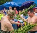 Крапивна жжет: Туляков приглашают на Международный фестиваль крапивы