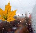Погода в Туле 18 сентября: ветер, дождь и похолодание