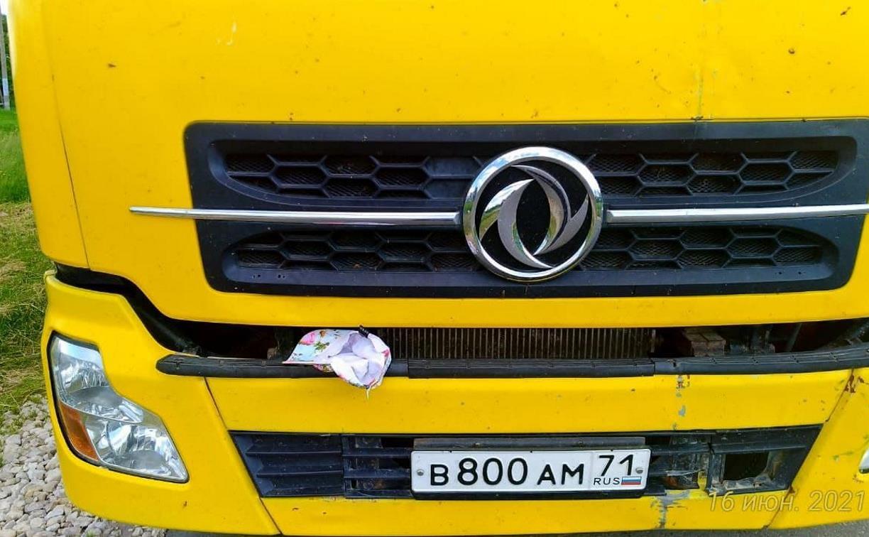 В Плавском районе грузовик сбил ребенка