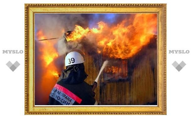 В Щекине тушили пожар на площади в пять соток