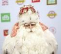 В Тулу приедет главный Дед Мороз страны