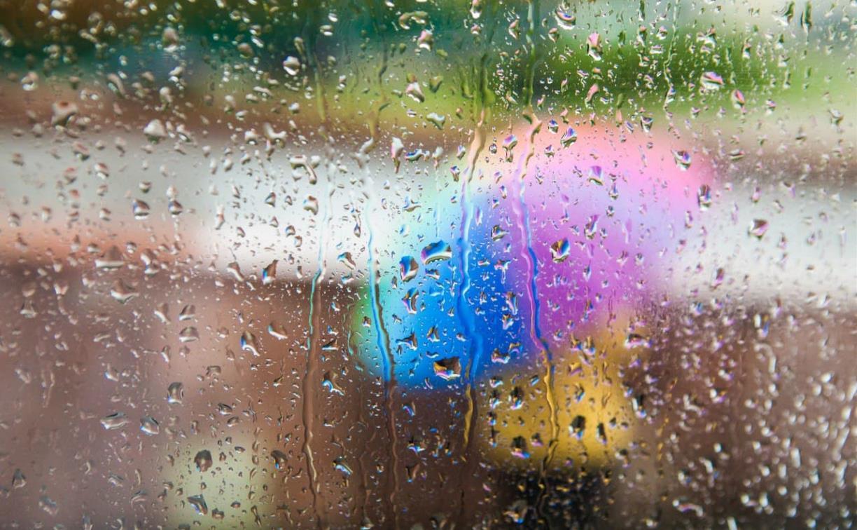 Погода в Туле 14 октября: дождливо, ветрено и прохладно