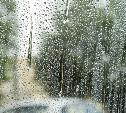 В выходные туляков ждет дождливая погода