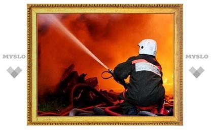 В Тульской области растет количество пожарных-добровольцев