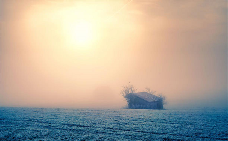 МЧС предупреждает туляков о сильном тумане
