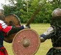 Фестиваль «Земля воинов» принял в Тульской области сильнейших бойцов