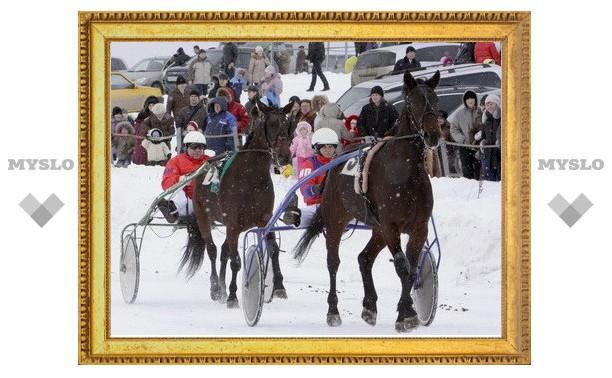 В Прилепах прошел конный праздник