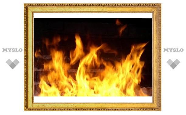 Под Тулой пожар разрушил деревянный дом