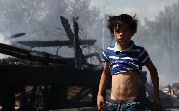 МЧС: Причиной пожара в Плеханово стала детская шалость
