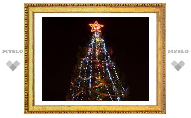 В Туле устанавливают елку