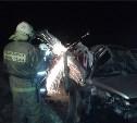 В ДТП на трассе Тула-Новомосковск погибла девушка