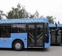 В Туле московские автобусы выйдут на маршрут 8 сентября