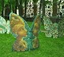 В Тулу слетятся бабочки!