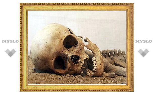 В лесу под Тулой нашли человеческий скелет