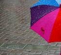 Выходные в Туле ожидаются дождливые