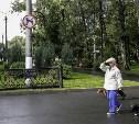 Владельцам собак: В тульских парках выгул питомцев запрещен!
